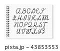アルファベット ベクタ ベクターのイラスト 43853553