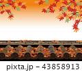 紅葉 秋 塀のイラスト 43858913