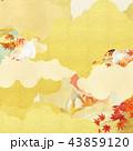 背景 和柄 金色のイラスト 43859120