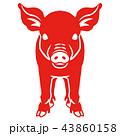 赤色の豚 - 正面 43860158