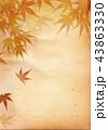 紅葉 和風 紅葉狩り 和柄 もみじ フレーム 古紙 43863330