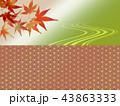 紅葉 和風 紅葉狩り 和柄 もみじ フレーム 市松模様 43863333