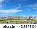 青空 秋 秋晴れの写真 43867564