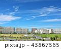 青空 秋 秋晴れの写真 43867565