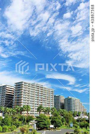 爽やかな秋晴れの青空とマンション街 43867568