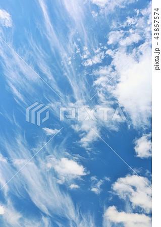 北海道 夏の青空 43867574