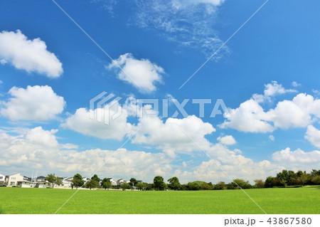 気持ちいい青空の公園風景 43867580