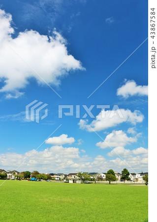 爽やかな青空と街の公園 43867584