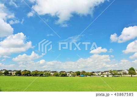 爽やかな青空と街の公園 43867585