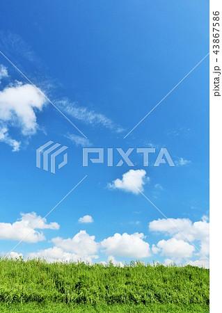 夏の青空と草原 43867586