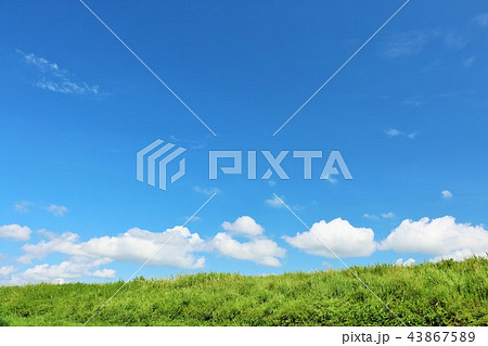 夏の青空と草原 43867589
