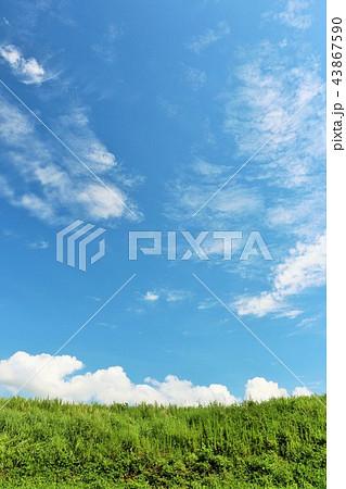 夏の青空と草原 43867590