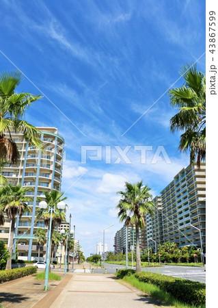 夏の青空とマンション街 43867599