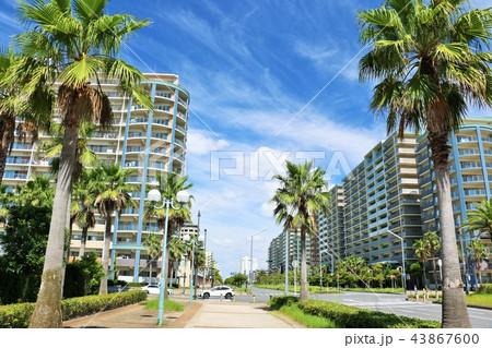 夏の青空とマンション街 43867600