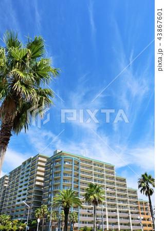 夏の青空とリゾートマンション 43867601