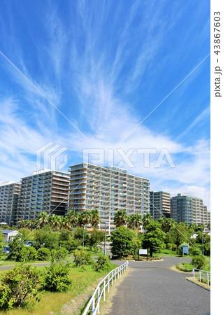 秋晴れの青空とマンション街 43867603
