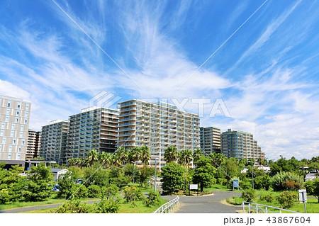 秋晴れの青空とマンション街 43867604
