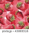 水彩画 いちご イチゴのイラスト 43869316