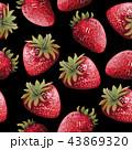 水彩画 いちご イチゴのイラスト 43869320