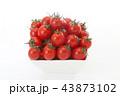 ミニトマト 43873102