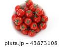 ミニトマト 43873108