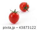 ミニトマト トマト 野菜の写真 43873122