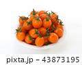 ミニトマト トマト 野菜の写真 43873195