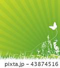 蝴蝶 蝶 草のイラスト 43874516