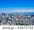 東京 都市風景 東京タワーの写真 43875758