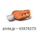 ベースボール 白球 野球のイラスト 43876273