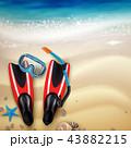 ダイビング 潜り 潜水のイラスト 43882215