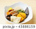 野菜煮物 煮物 和食の写真 43886159