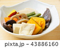 野菜煮物 煮物 和食の写真 43886160