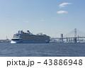 クァンタムオブザシーズ 横浜港 豪華客船の写真 43886948