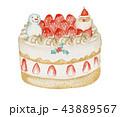 苺ショート クリスマス ケーキ 43889567