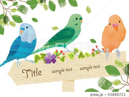 かわいい小鳥のフレーム 43889721