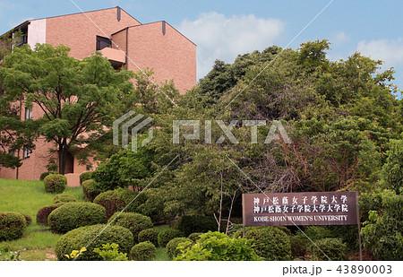 神戸松蔭女子学院大学 43890003