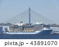 クァンタムオブザシーズ 豪華客船 横浜ベイブリッジの写真 43891070