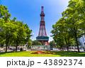 札幌テレビ塔 大通公園 夏の写真 43892374