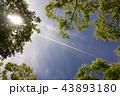 飛行機雲 43893180