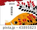 イノシシ 謹賀新年はがき2019 横 43893823