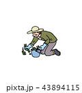 草取りをするおばさん 43894115