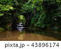 濃溝の滝 滝 風景の写真 43896174