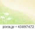 彼岸花 曼珠沙華 花のイラスト 43897472