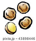 筆描き 野菜 ジャガイモ 43898446