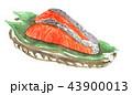 salmon18920pix7 43900013
