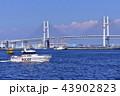 警察用船舶 43902823