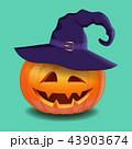 かぼちゃ カボチャ 南瓜のイラスト 43903674