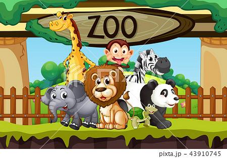 wild animals at the zooのイラスト素材 43910745 pixta