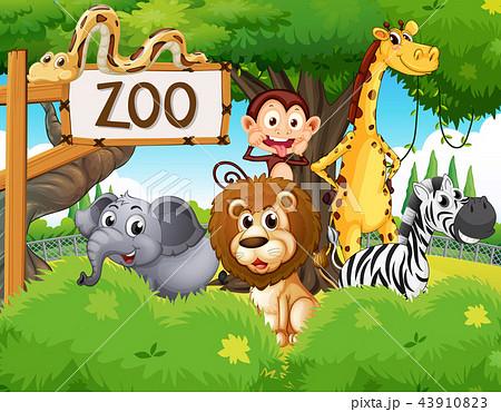 wild animals at the zooのイラスト素材 43910823 pixta